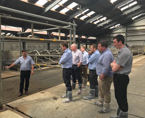 Feed Advisers at Greenmount Dairy Unit